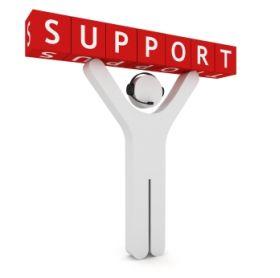 SDD Support Plan for Module Updates Diagnostics Key Programming Support Plan